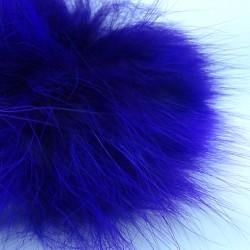 Zorro artico purpura