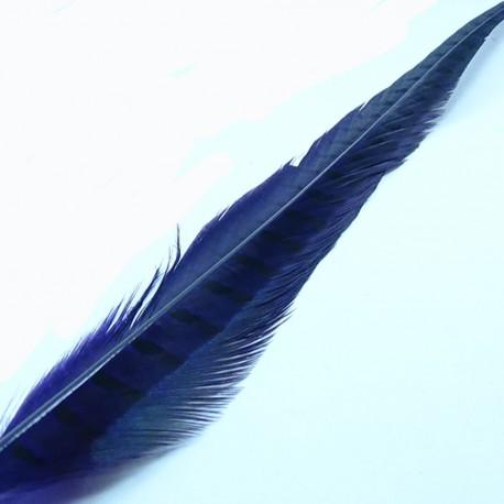 cola de faisan HARELINE purpura