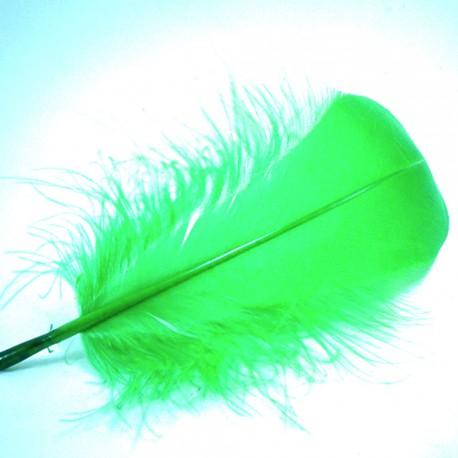 pluma oca HARELINE verde