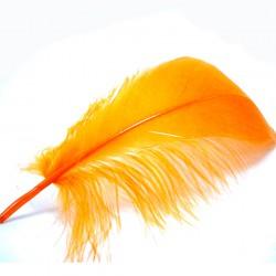 pluma oca HARELINE naranja