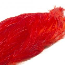 cuello especial rojo