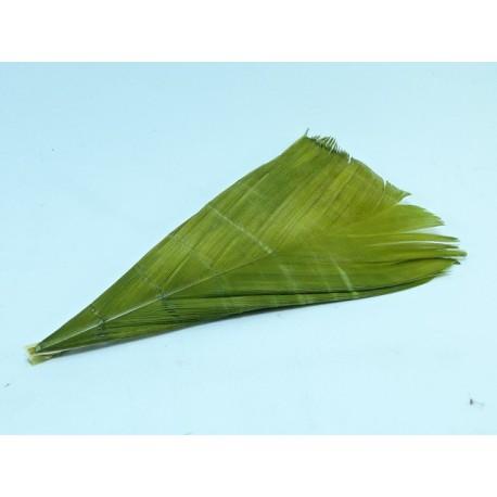 sustituto condor oliva