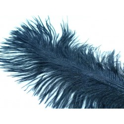 pluma avestruz HARELINE negro